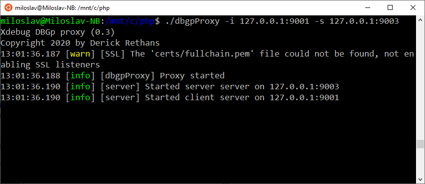Starting DBGp proxy