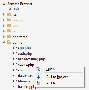 remote browser